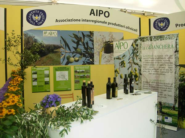 22_AIPO